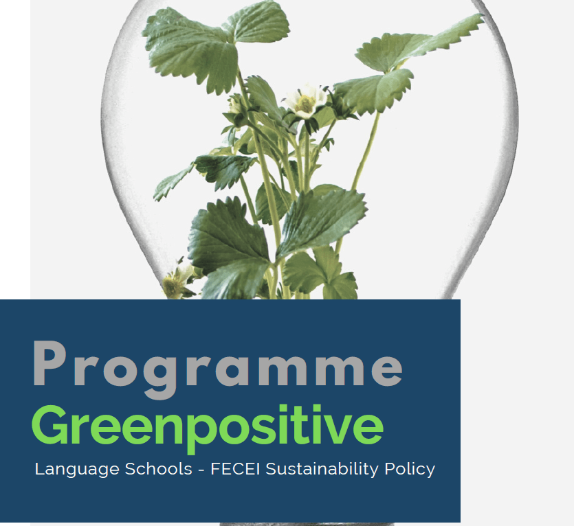 FECEI Greenpositive cover page