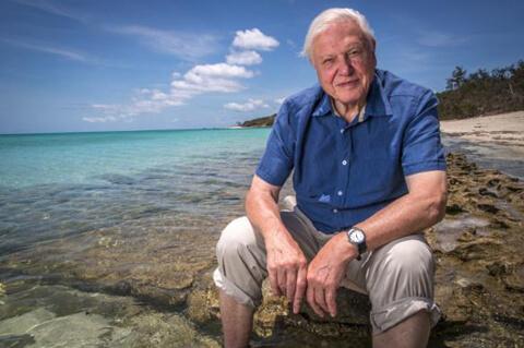 David Attenborough Wikicommons