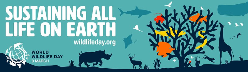 World WIldlife Day official poster