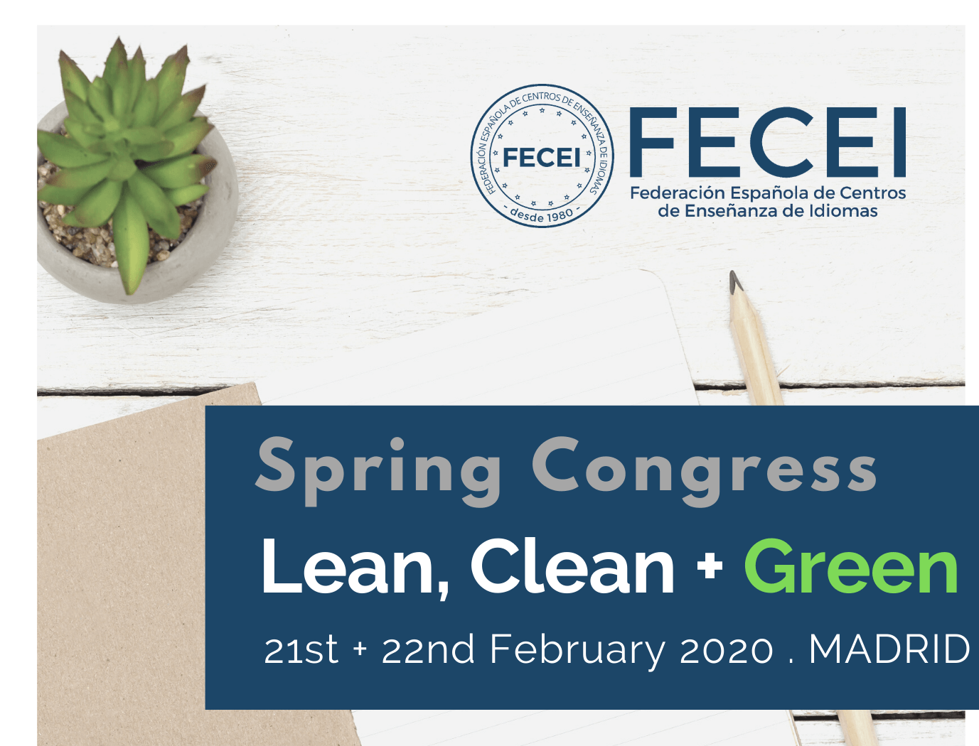 FECEI spring conference 2020